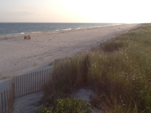 Taken August 29th, 2013, this photo captures just how healthy the vast majority of our beaches in Quogue actually are.